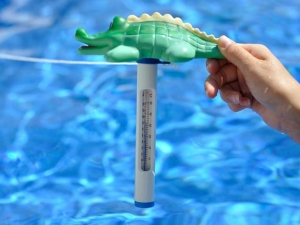 Термометр для воды в бассейне